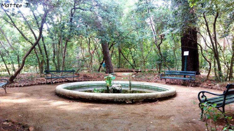 Parc Dordic Mayneri, île de Lopud