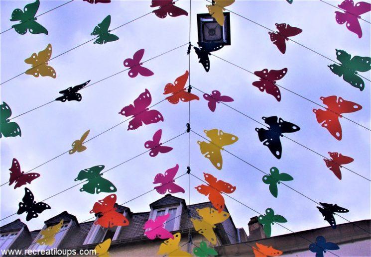 Ciel de papillons multicolores